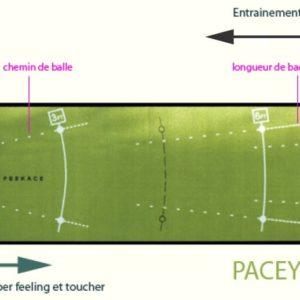 Tapis de Putting Peekace PaceYourPutt Classic 60cm x 400cm 3